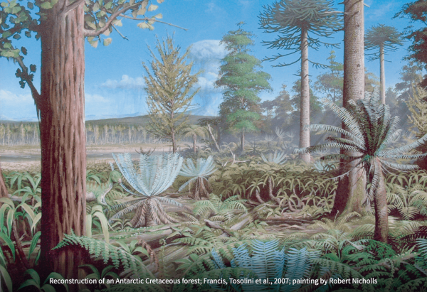 A historical illustration of an antarctic forest, showing a blue sky, a collection of large trees, and lush ferns