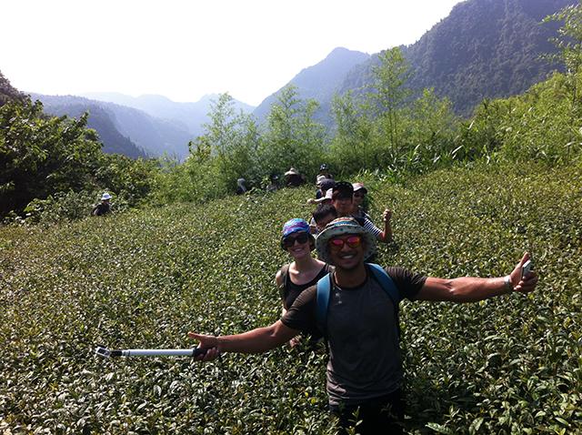 China Field Class - Tea trip in Three Gorge Dam area